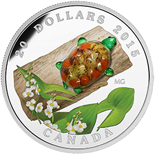 2015 $20 Fine Silver Coin - Venetian Glass Turtle with Broadleaf Arrowhead Flower